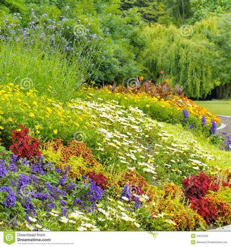 Bright Garden Flowers Bright Garden Flowers Stock Photo Image 54575253