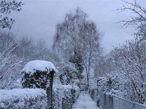 at t winter garden free stock photos rgbstock free stock images snowy