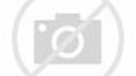 Cute Barbie Doll Wallpaper HD
