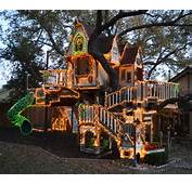 Kids Tree House A Magical Lights Up For Christmas
