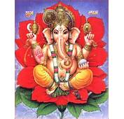 Who Is Ganesh  Tree And Plant Health Care