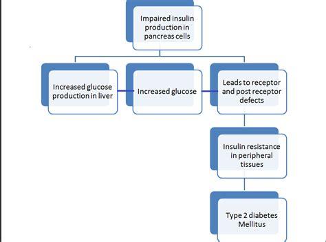diabetes mellitus pathophysiology flowchart the pathophysiology of type 2 diabetes mellitus niddm