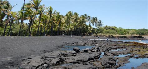picture photo black sand beach at punaluu big island punaluu black sand beach big island of hawaii