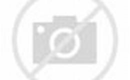 Model Pagar Rumah Modern