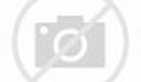 desain pagar rumah mewah model pagar rumah mewah minimalis modern batu ...