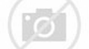 Kumpulan Gambar Kelinci Lucu dan Imut - Kumpulan Gambar & Animasi ...