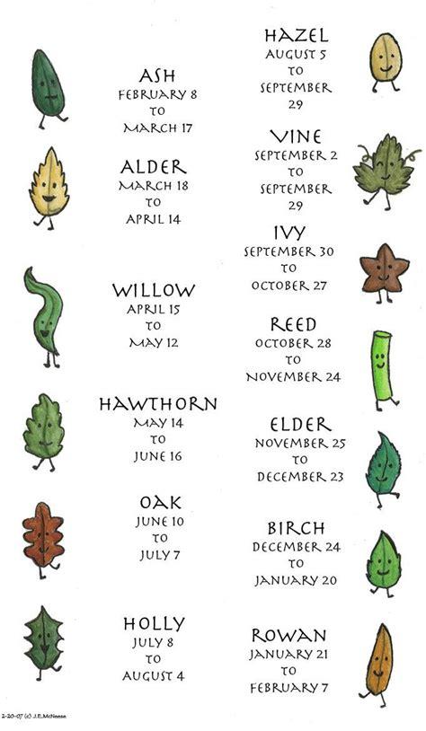 Celtic Tree Calendar Celtic Tree Calendar Grimoire