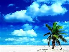 Summer Beach Desktop Wallpaper