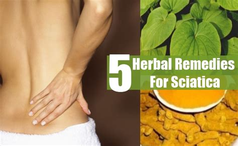 5 sciatica herbal remedies treatments cure