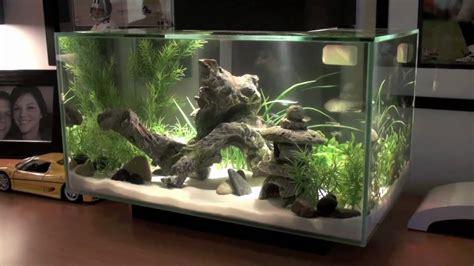 fluval edge 2 beleuchtung fluval edge aquarium review aquatic mag