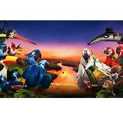 Rio 2 Hollywood Movie 2014 Wallpapers  2560x1600 1506723