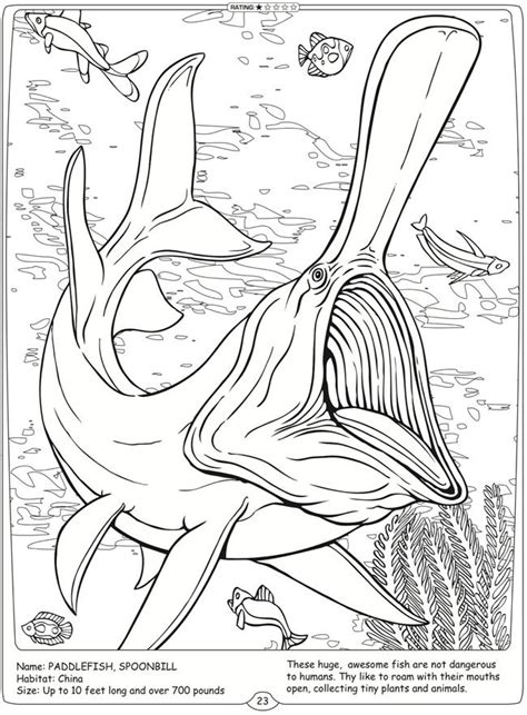monster fish coloring pages 95 best color fish and such images on pinterest