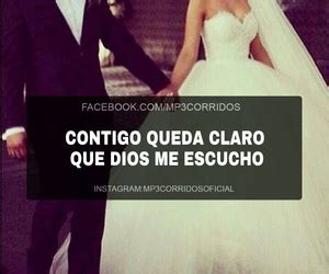 imagenes perronas corridos vip 2015 207 images about corridos vip on we heart it see