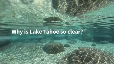 why is lake tahoe so clear