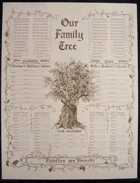 lineage book vol 23 national society of the daughters of the american revolution 22001 23000 1898 classic reprint books our family tree chart