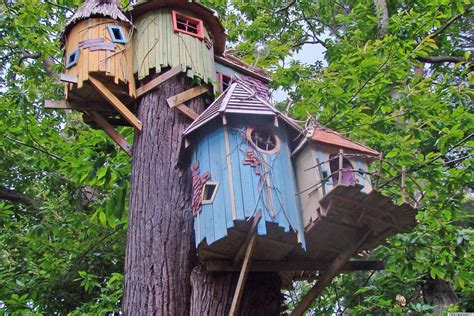 Backyard Treehouse Plans by Cool Treehouse Designs We Wish We Had In Our Backyard Photos