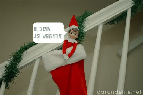 the elf on the shelf