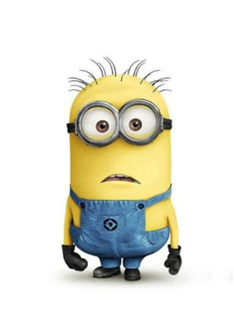 download minion wallpaper free for android appszoom