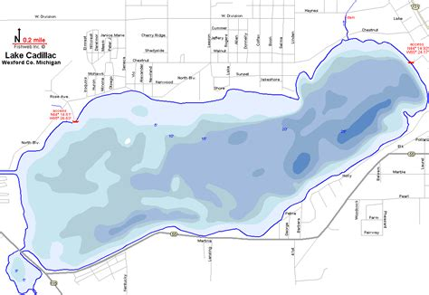 dnr cadillac mi lake michigan fishing map www imgkid the image kid