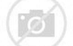 gambar pemandangan sungai di dalam hutan