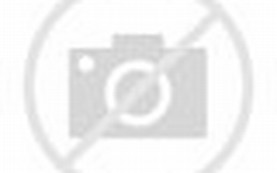 Download gambar pemandangan sungai di dalam hutan