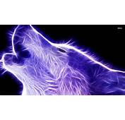 Cool Backgrounds Of Animals Wolf  Wallpaper Cave