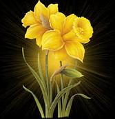 Animated Yellow Flower