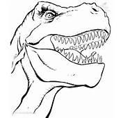 Malvorlagen/Ausmalbilder Dinosaurier Und Echsen Ausmalbilder