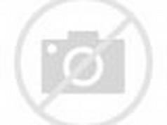 Kid Rock Screensaver
