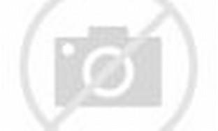 Contoh Lukisan Kupu Kupu | My Personnal blog