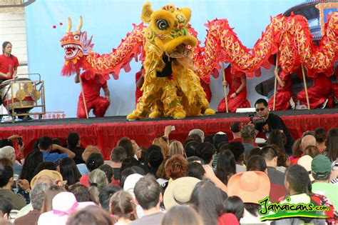 new year china highlights photo highlights new year festival year of the