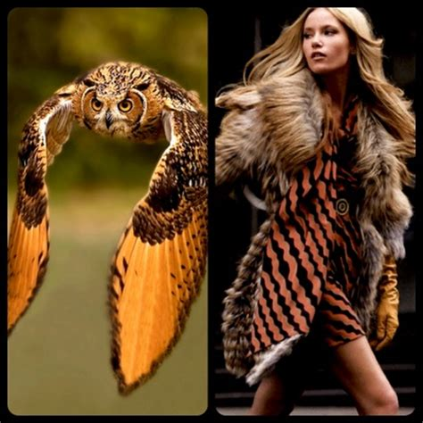 what s the best costume humans and nature books 17 best images about fashion inspired by animals on