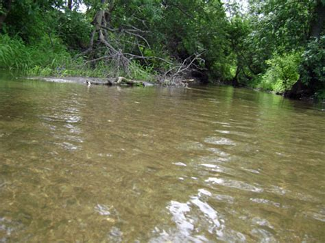 wading in plum creek beyond house
