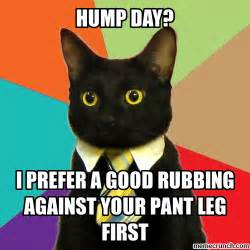 Hump Day Memes - hump day