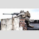 A British Snipe...