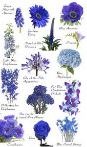 Flower names by color hayley s wedding tips 101