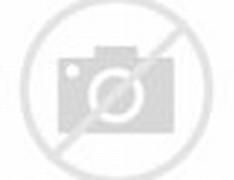 American Green Tree Frog Habitat