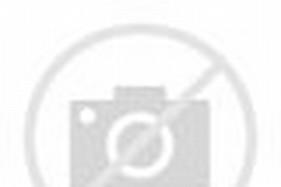 Veena Indian Instrument