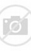 Bokeh City Lights Photography