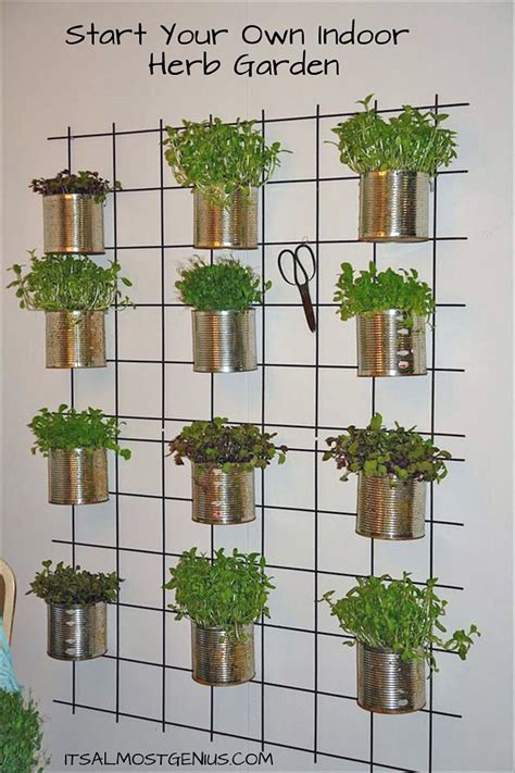 Indoor Herb Garden Wall | creative indoor vertical wall gardens decorating your