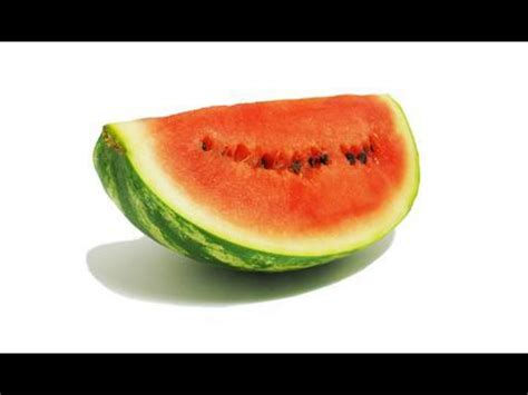 rotting watermelon decomposition timelapse footage youtube