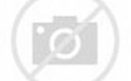 Modif Kawasaki Ninja 150 L Jari Jari | masdoe.com
