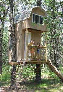 Build A Two Tree Treehouse Treehouse Floor Plans 2 Story
