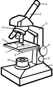 Microscope Coloring sketch template