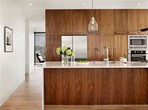 kitchen cabinets walnut 10 amazing modern kitchen cabinet styles