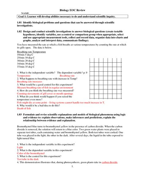 Bio Review 28 transcription and translation summary worksheet answers dna transcription and