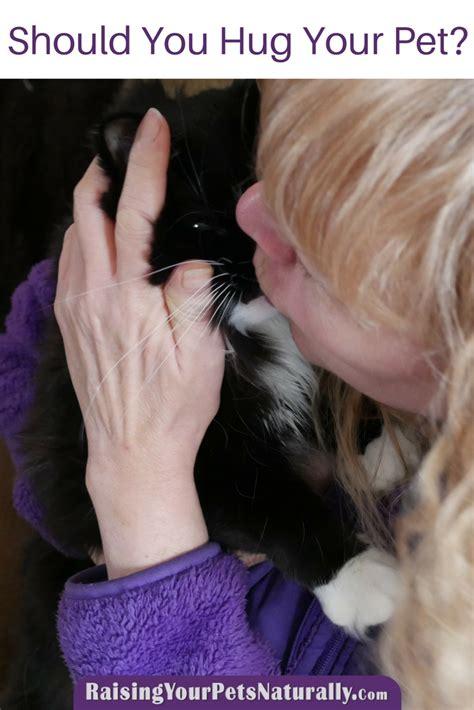 do dogs like hugs do dogs like to be hugged should you hug your or cat cat hug or hug yes