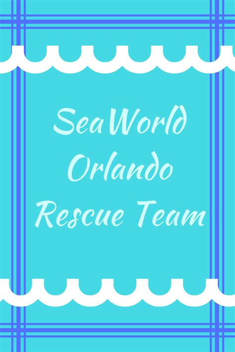 orlando shelter seaworld team assists with rescue of stranded manatees