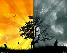 Cool Day and Night Picture
