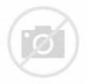 Model Baju Dinas untuk Pegawai Swasta Wanita (Tokopedia)